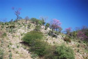 Paysage autour du Barranco del Cobre