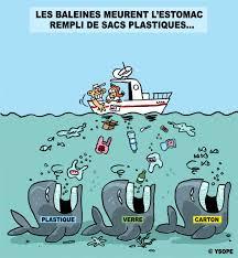 pollution bateau