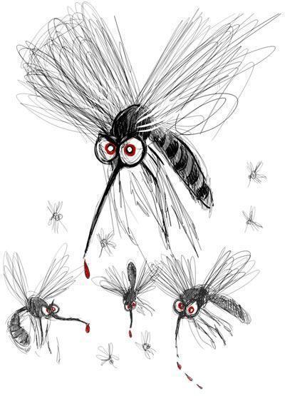 Contre les petites b b tes ecolo au quotidien - Lavande contre moustique ...