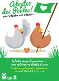 adoptez-des-poules