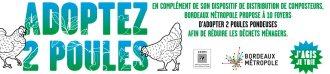 adoptez-des-poules3