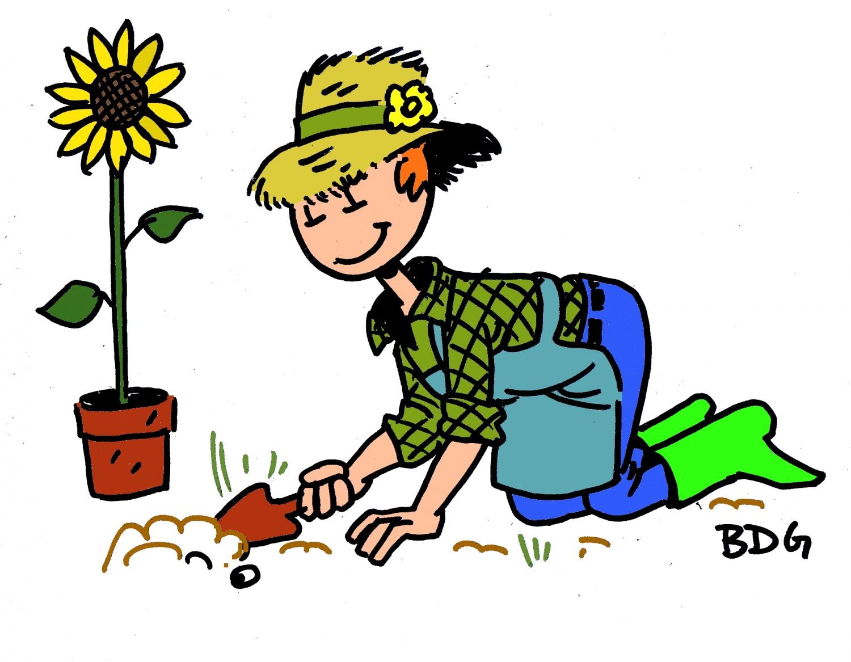 21 juin 2015 entre bien tre plan te et p pette for Les meilleurs sites de jardinage