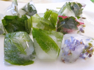 glaçons-herbes