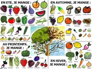 fruits-legumes-printemps-ete-automne-hiver-saison